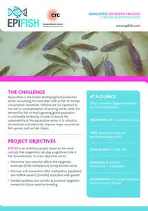 EPIFISH Fact Sheet